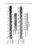 METHODS AND COMPOSITIONS FOR IDENTIFICATION OF PROSTATE CANCER MARKERS diagram and image