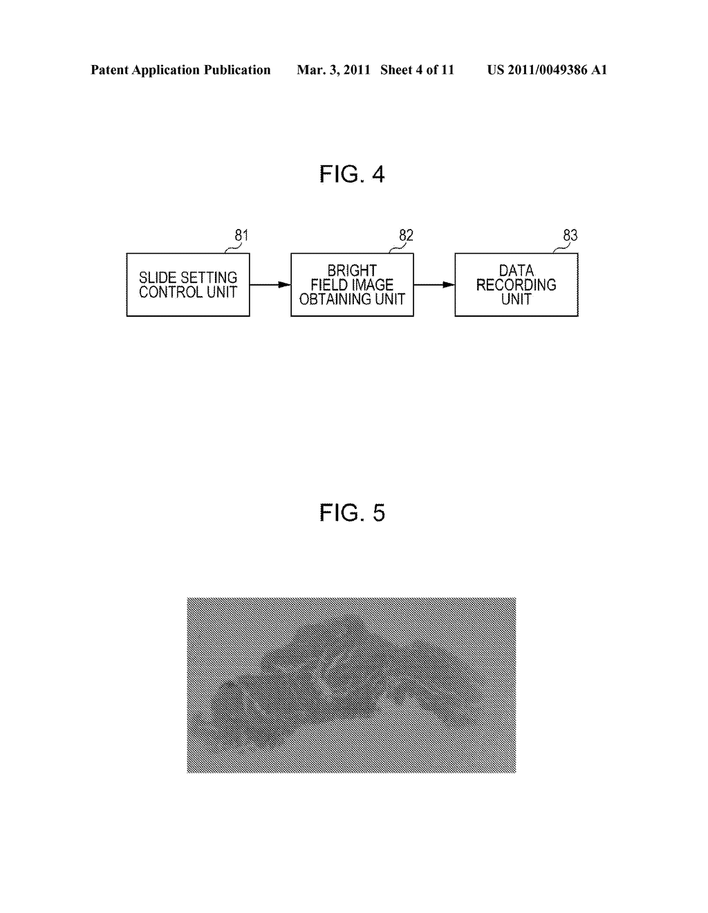 FLUORESCENCE IMAGE PRODUCING METHOD, FLUORESCENCE IMAGE PRODUCING APPARATUS, AND FLUORESCENCE IMAGE PRODUCING PROGRAM - diagram, schematic, and image 05