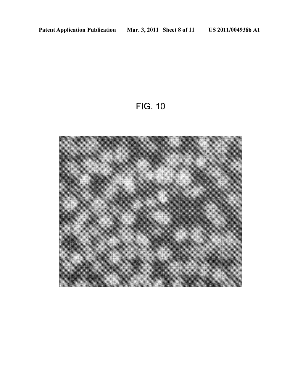 FLUORESCENCE IMAGE PRODUCING METHOD, FLUORESCENCE IMAGE PRODUCING APPARATUS, AND FLUORESCENCE IMAGE PRODUCING PROGRAM - diagram, schematic, and image 09