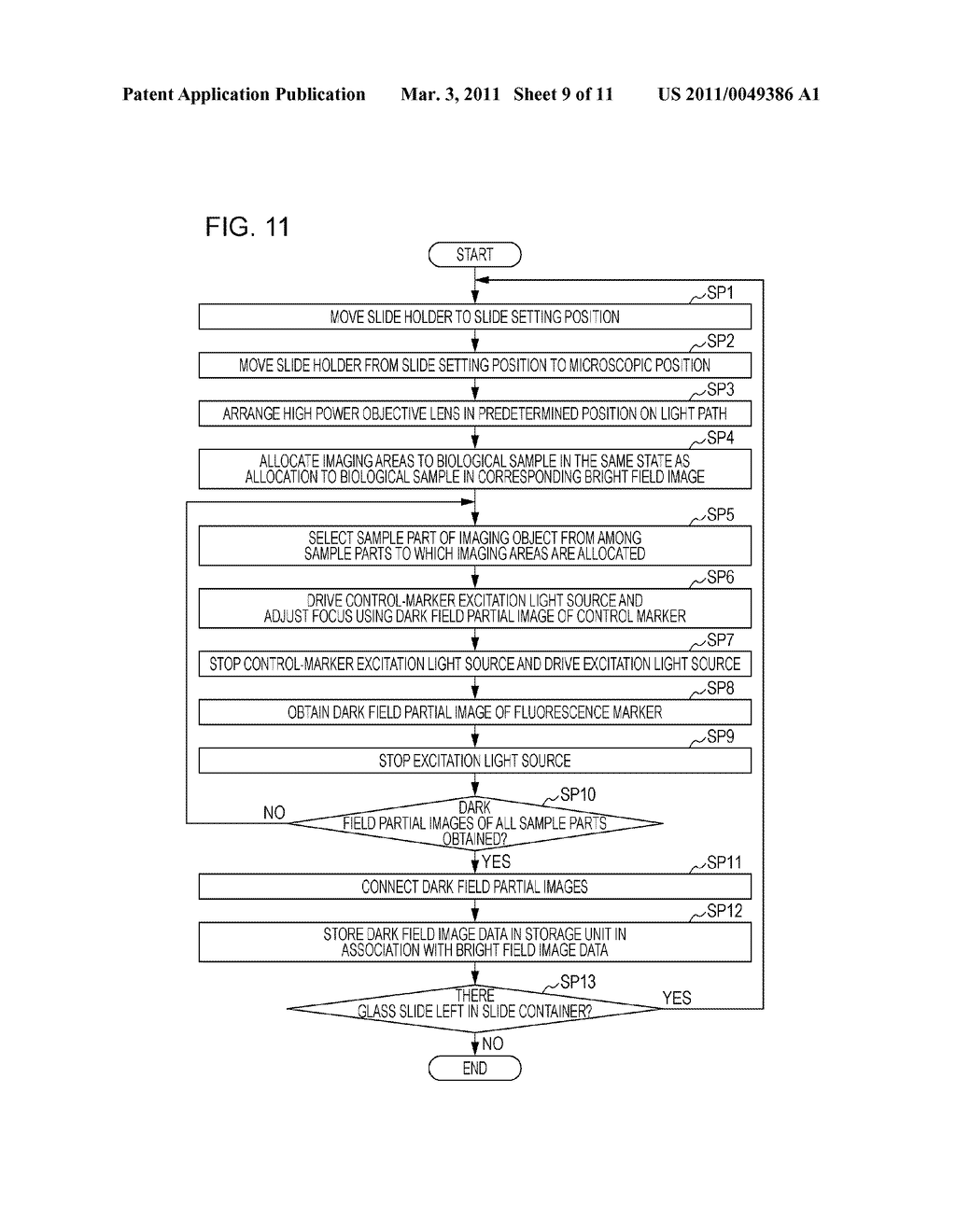 FLUORESCENCE IMAGE PRODUCING METHOD, FLUORESCENCE IMAGE PRODUCING APPARATUS, AND FLUORESCENCE IMAGE PRODUCING PROGRAM - diagram, schematic, and image 10