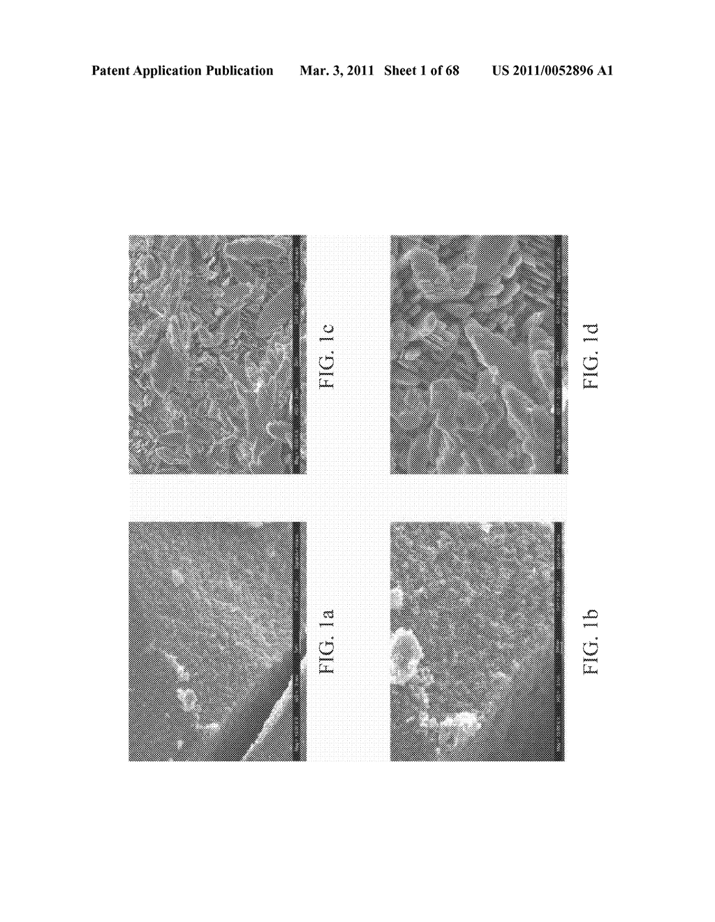 Zinc Oxide and Cobalt Oxide Nanostructures and Methods of Making Thereof - diagram, schematic, and image 02