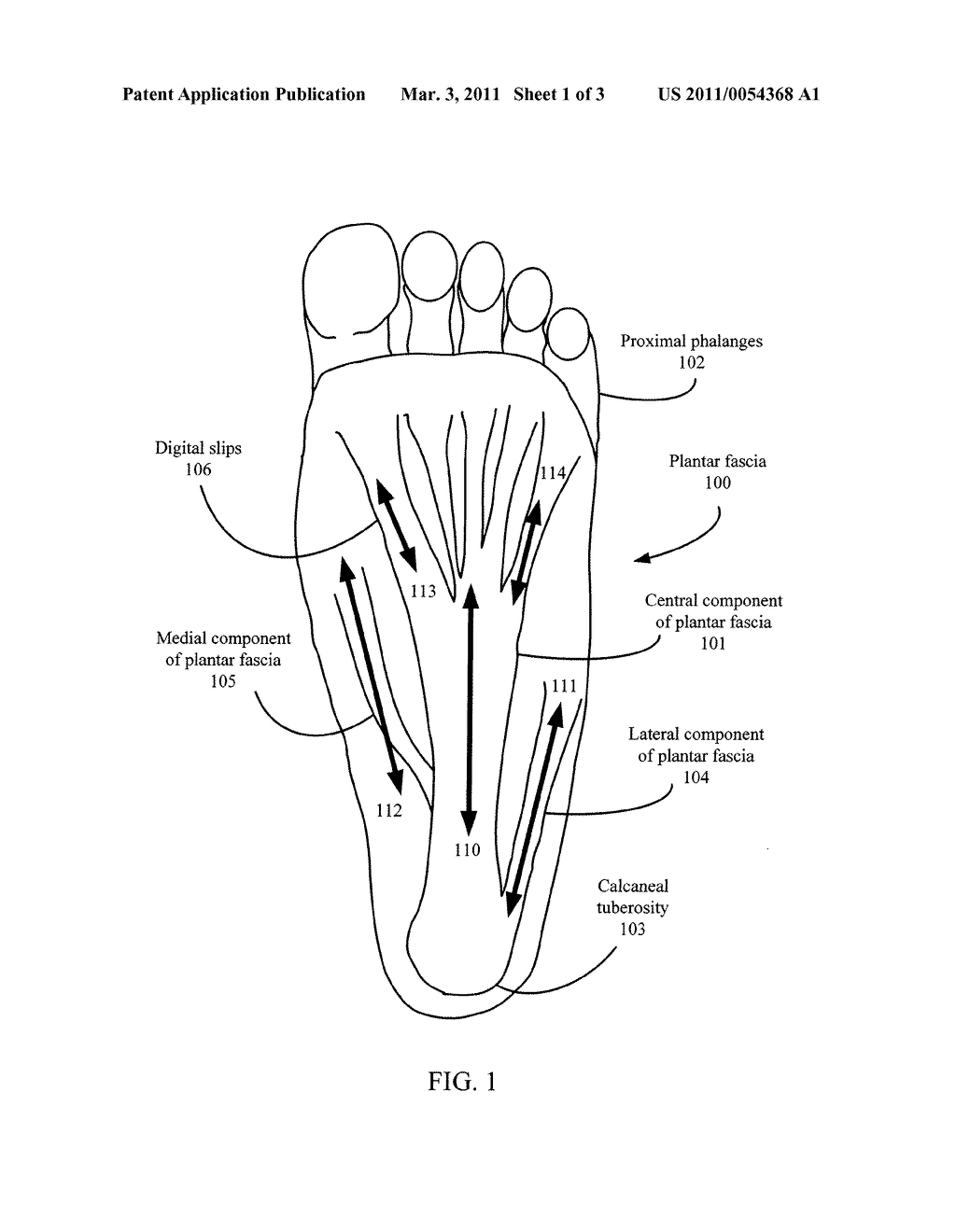 Foot Pain Relief Device - diagram, schematic, and image 02
