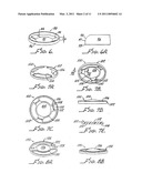 ACCOMMODATING INTRAOCULAR LENS WITH OUTER SUPPORT STRUCTURE diagram and image
