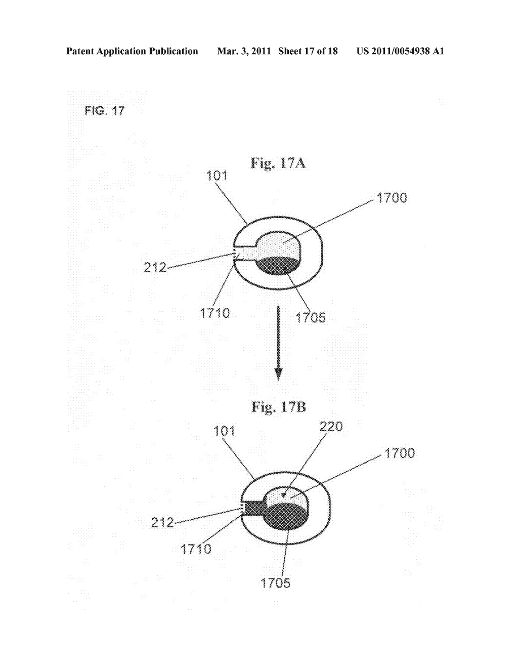 Devices and methods for detecting an analyte in salivary fluid - diagram, schematic, and image 18