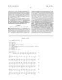 Compositions of variant biocatalysts for preparing enantiopure amino acids diagram and image