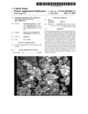 METHOD FOR FABRICATING AEROGELS AND THEIR APPLICATIONS IN BIOCOMPOSITES diagram and image