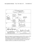 METHOD FOR CREATING BROAD-SPECTRUM RESISTANCE TO FUNGI IN TRANSGENIC PLANTS diagram and image