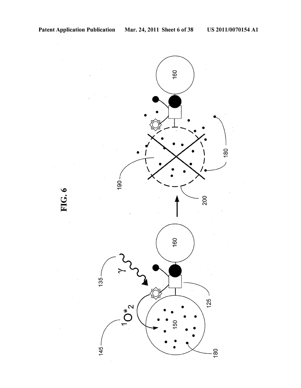 Artificial cells - diagram, schematic, and image 07