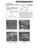 BIODEGRADABLE THERMOPLASTIC RESIN COMPOSITION COMPRISING CELLULOSE DERIVATIVES AND SURFACE-TREATED NATURAL FIBER diagram and image