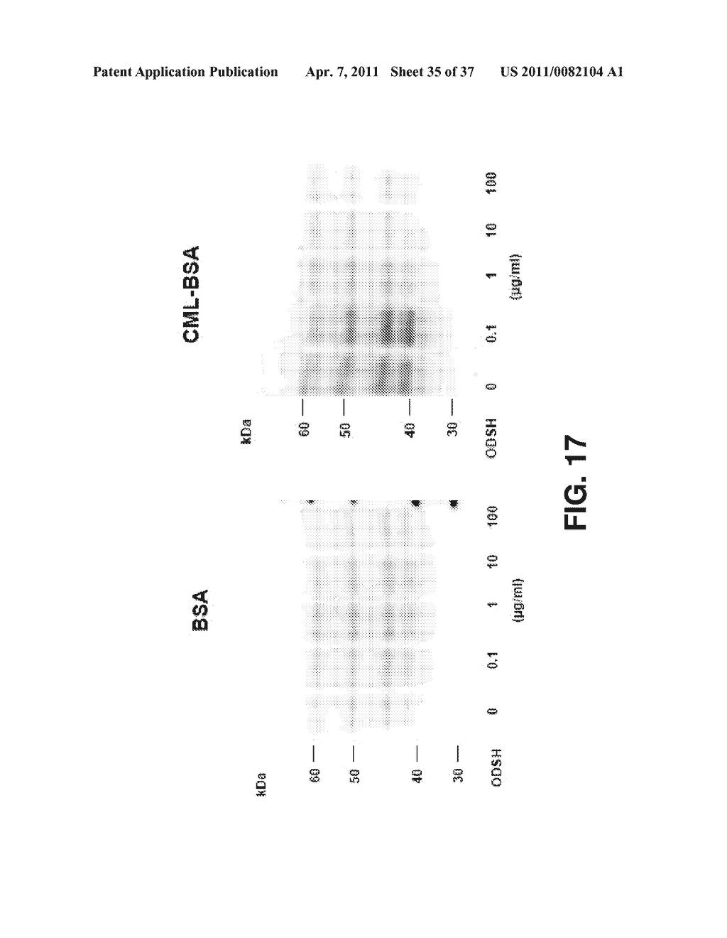 ALKYLATED SEMI SYNTHETIC GLYCOSAMINOGLYCOSAN ETHERS, AND METHODS FOR MAKING AND USING THEREOF - diagram, schematic, and image 36