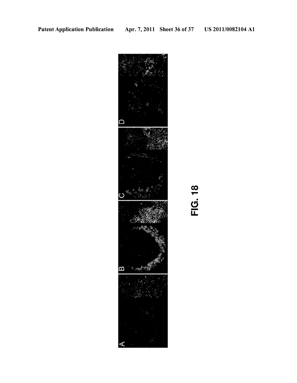 ALKYLATED SEMI SYNTHETIC GLYCOSAMINOGLYCOSAN ETHERS, AND METHODS FOR MAKING AND USING THEREOF - diagram, schematic, and image 37