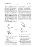 Process for the Preparation of Quaternary N-Alkyl Morphinan Alkaloid Salts diagram and image