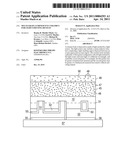 MULTI-GRAIN LUMINESCENT CERAMICS FOR LIGHT EMITTING DEVICES diagram and image
