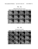 APPARATUS AND METHOD FOR COLOR ROLLING SUPPRESSION diagram and image