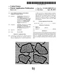ELECTRODE MATERIALS WITH HIGH SURFACE CONDUCTIVITY diagram and image