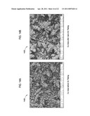 NUCLEATION AND GROWTH OF TIN PARTICLES INTO THREE DIMENSIONAL COMPOSITE ACTIVE ANODE FOR LITHIUM HIGH CAPACITY ENERGY STORAGE DEVICE diagram and image