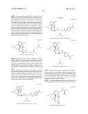GALANTAMINE AMINO ACID AND PEPTIDE PRODRUGS AND USES THEREOF diagram and image