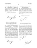 Alpha-(N-Sulfonamido)Acetamide Derivatives as Beta-Amyloid Inhibitors diagram and image