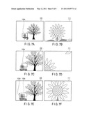 IMAGE CAPTURING APPRATUS AND IMAGE CAPTURING METHOD diagram and image