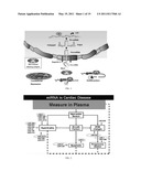 ASSESSING LEFT VENTRICULAR REMODELING VIA TEMPORAL DETECTION AND MEASUREMENT OF microRNA IN BODY FLUIDS diagram and image