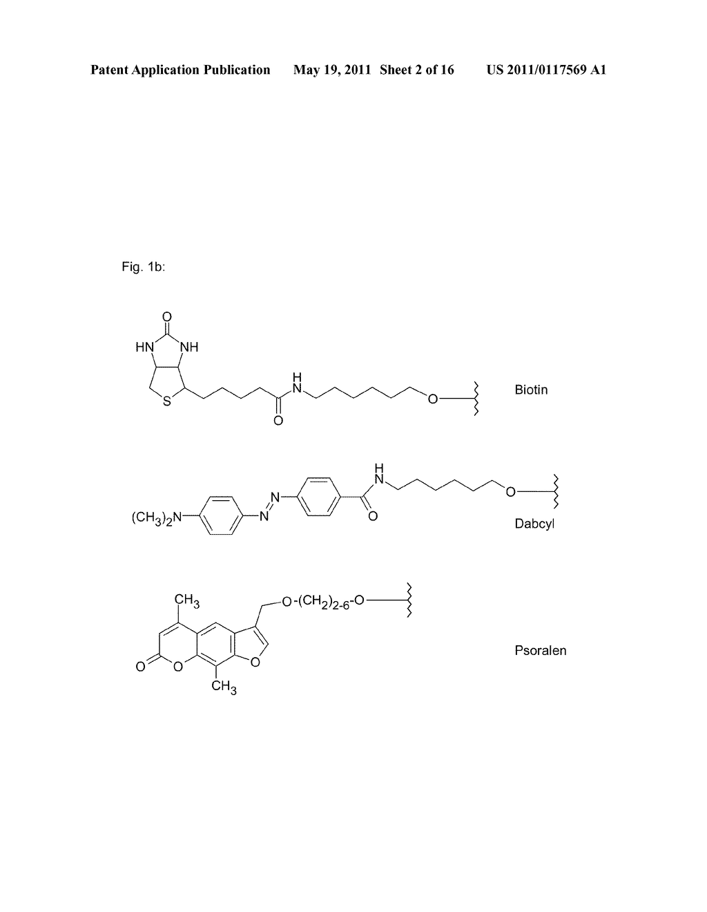 POLYMIDE NUCLEIC ACID DERIVATIVES, AND AGENTS AND PROCESSES FOR PREPARING THEM - diagram, schematic, and image 03