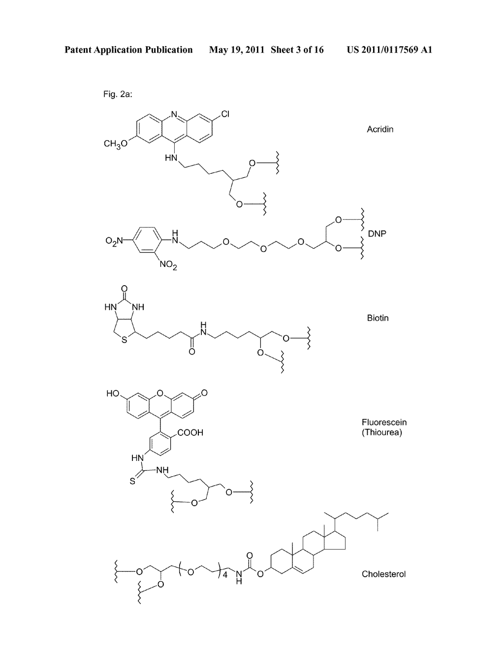 POLYMIDE NUCLEIC ACID DERIVATIVES, AND AGENTS AND PROCESSES FOR PREPARING THEM - diagram, schematic, and image 04