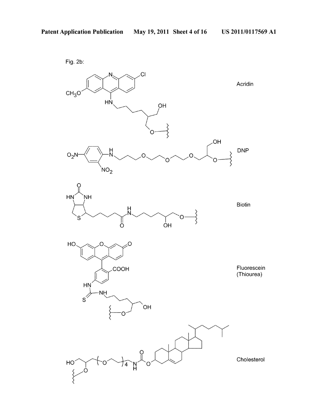 POLYMIDE NUCLEIC ACID DERIVATIVES, AND AGENTS AND PROCESSES FOR PREPARING THEM - diagram, schematic, and image 05