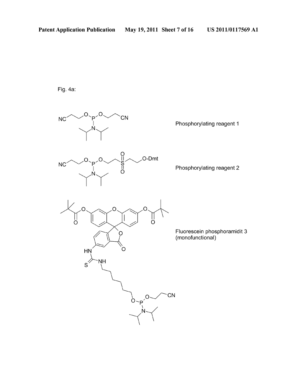 POLYMIDE NUCLEIC ACID DERIVATIVES, AND AGENTS AND PROCESSES FOR PREPARING THEM - diagram, schematic, and image 08