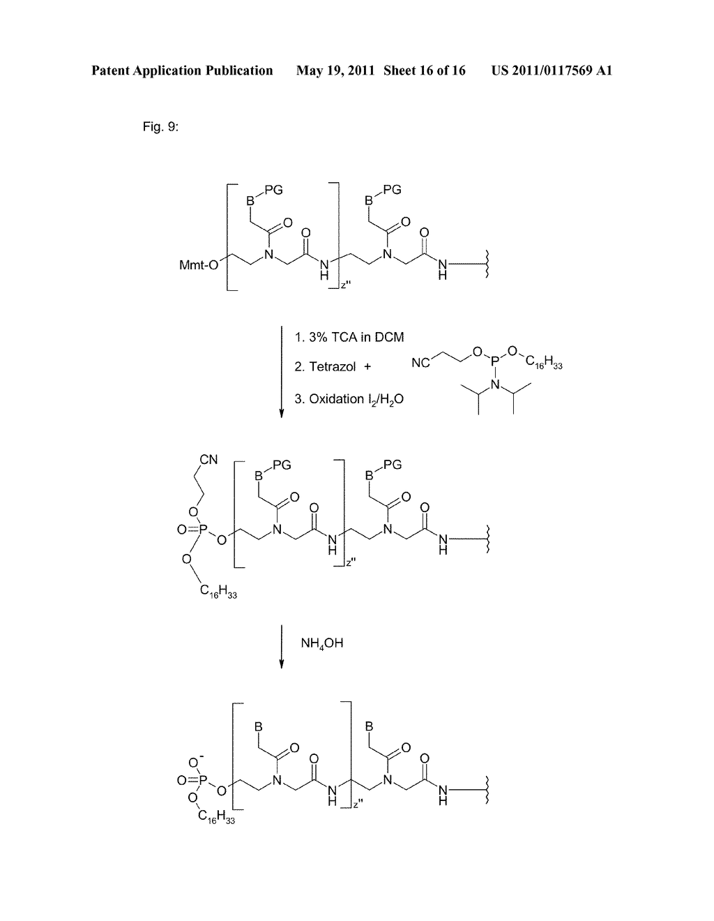 POLYMIDE NUCLEIC ACID DERIVATIVES, AND AGENTS AND PROCESSES FOR PREPARING THEM - diagram, schematic, and image 17