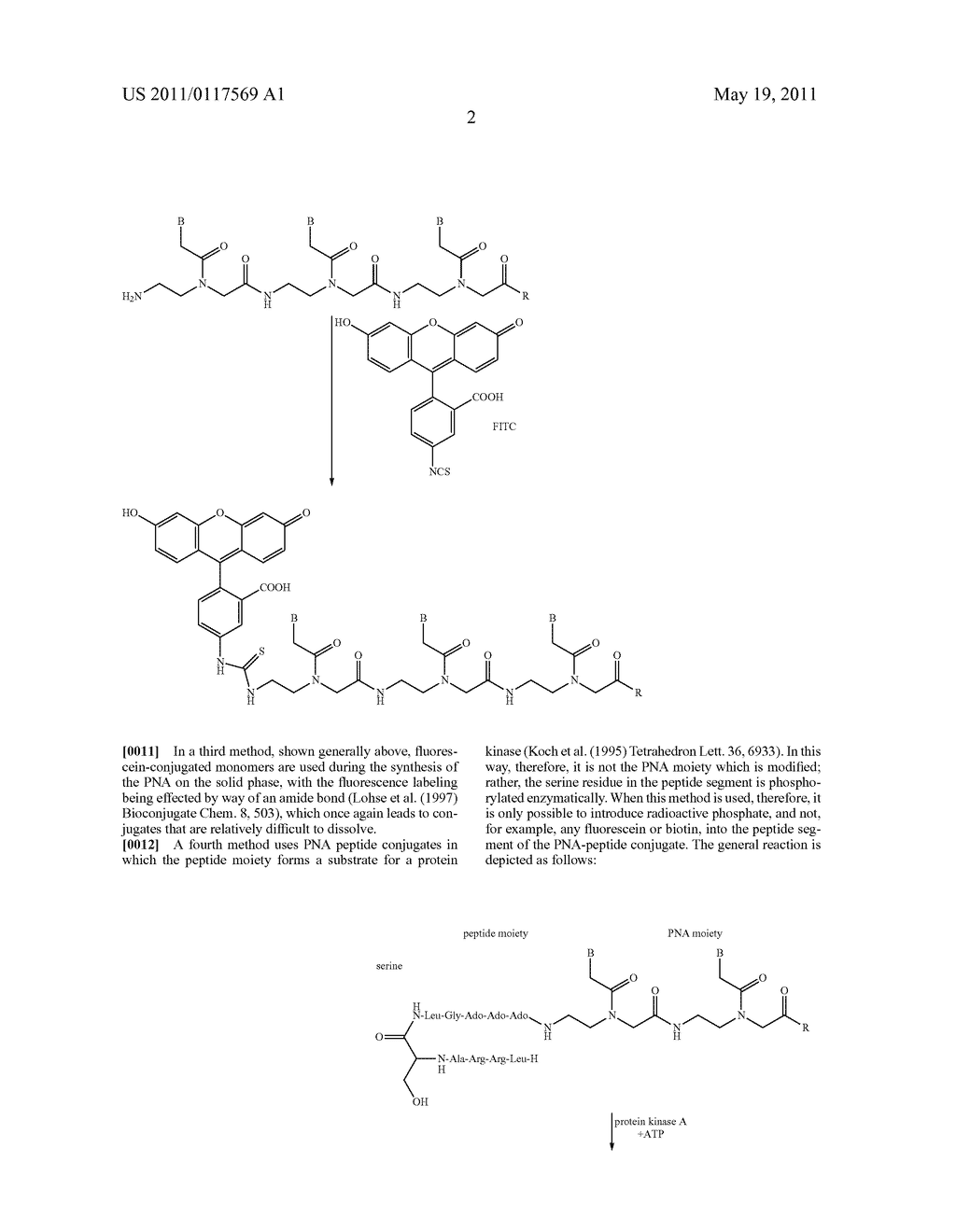 POLYMIDE NUCLEIC ACID DERIVATIVES, AND AGENTS AND PROCESSES FOR PREPARING THEM - diagram, schematic, and image 19