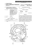 METHOD TO DERIVE ANATOMICAL AND/OR PATHOLOGICAL STRUCTURES FROM DATA OF IMAGING TECHNOLOGIES diagram and image