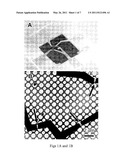SHAPE MANIPULATION OF NANOSTRUCTURES diagram and image
