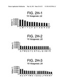 HUMAN ANTIBODIES THAT BIND HUMAN IL-12 AND METHODS FOR PRODUCING diagram and image