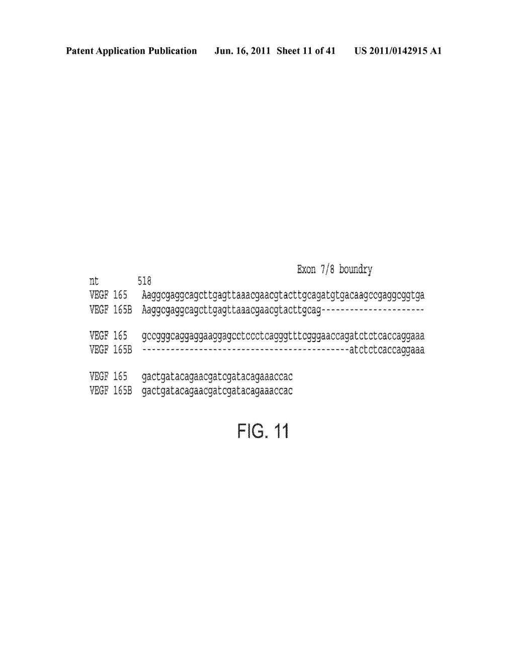 COMPOSITIONS AND METHODS FOR INHIBITION OF VEGF - diagram, schematic, and image 12