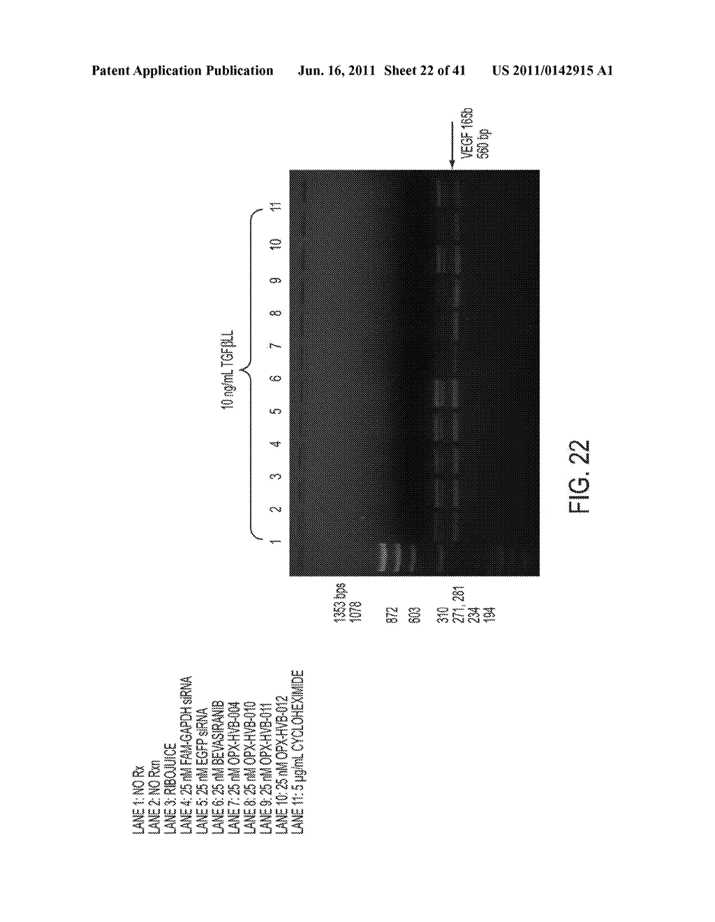 COMPOSITIONS AND METHODS FOR INHIBITION OF VEGF - diagram, schematic, and image 23