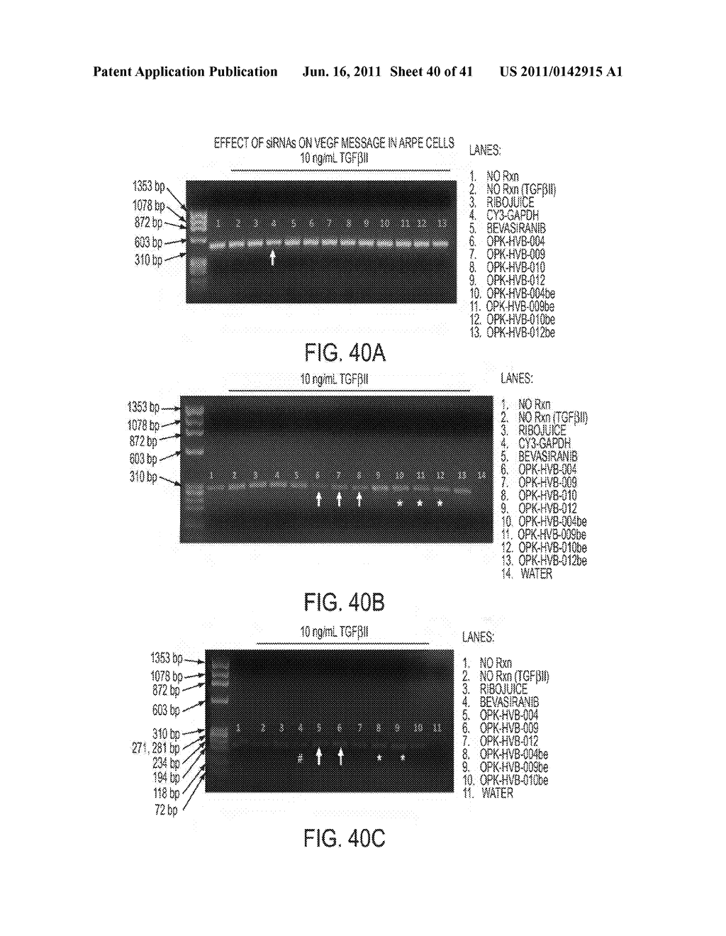 COMPOSITIONS AND METHODS FOR INHIBITION OF VEGF - diagram, schematic, and image 41