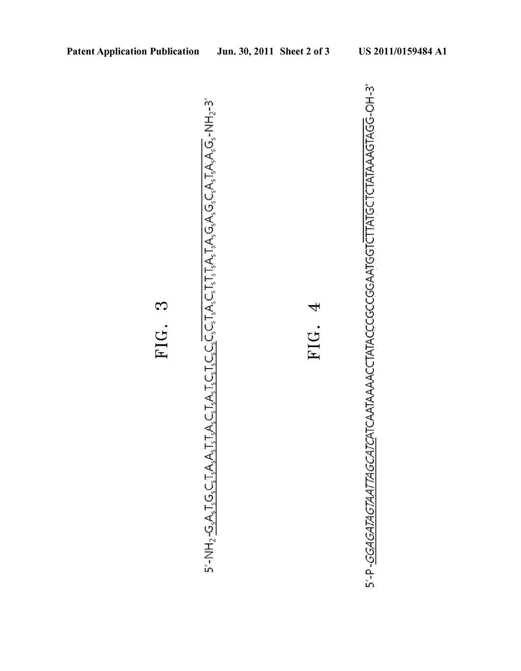 APPARATUS AND METHOD OF AUTHENTICATING PRODUCT USING POLYNUCLEOTIDES - diagram, schematic, and image 03