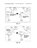 COVALENT TETHERING OF FUNCTIONAL GROUPS TO PROTEINS AND SUBSTRATES     THEREFOR diagram and image