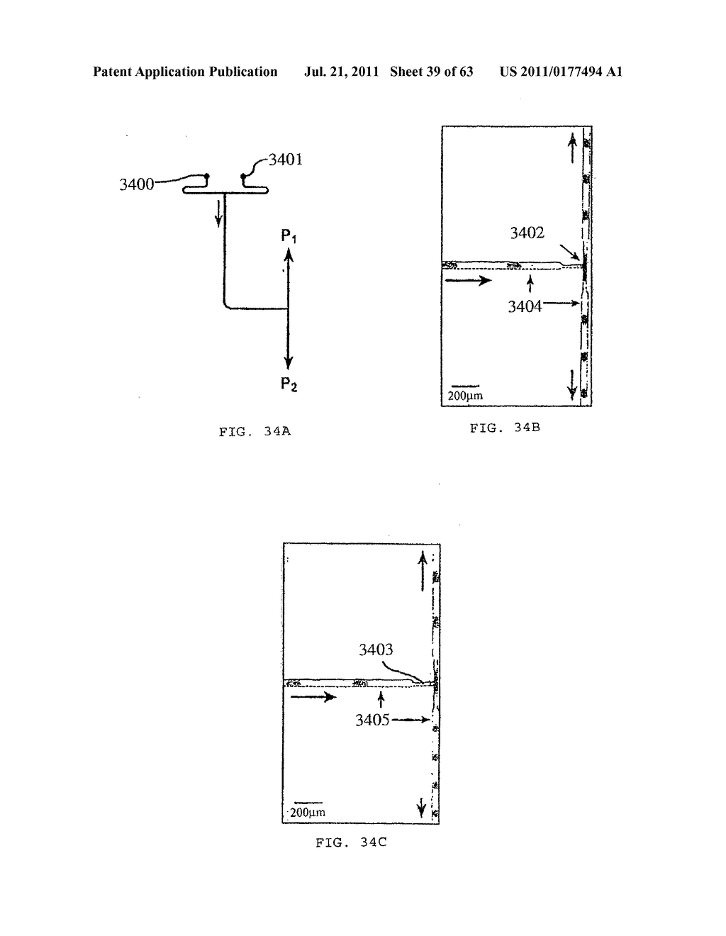 DEVICE AND METHOD FOR PRESSURE-DRIVEN PLUG TRANSPORT - diagram, schematic, and image 40