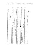 COMPOSITIONS AND METHODS FOR MEASURING LEVELS OF BIOACTIVE HUMAN HEPCIDIN diagram and image