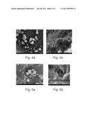 POROUS, CARBOHYDRATE-BASED FOAM STRUCTURES AND ASSOCIATED METHODS diagram and image