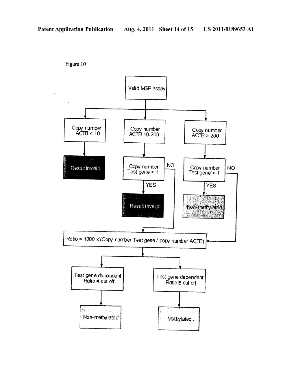 Detection and prognosis of cervical cancer diagram schematic and detection and prognosis of cervical cancer diagram schematic and image 15 ccuart Choice Image