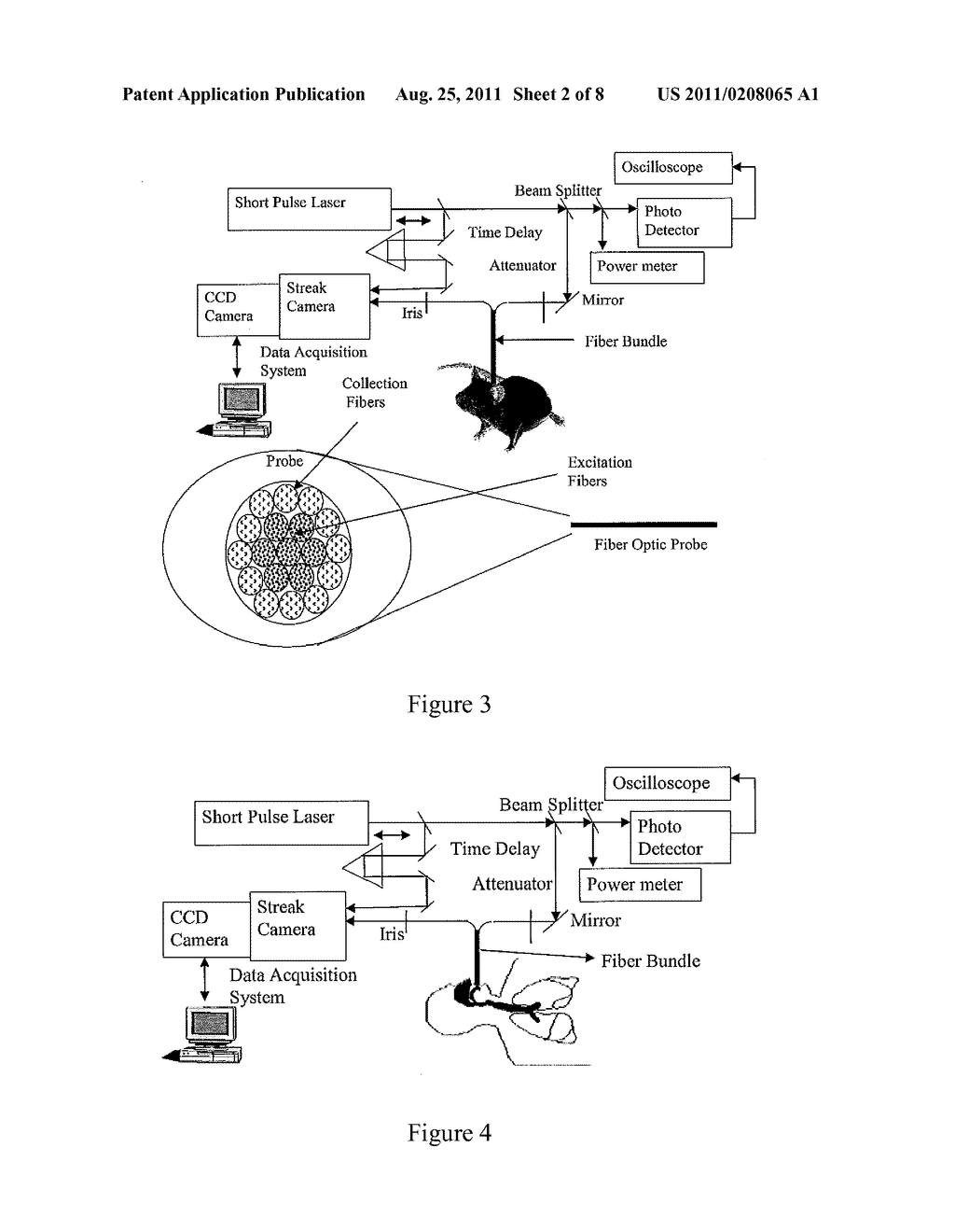 Optical Tomography System Using Short-Pulse Laser for Early Cancer     Diagnostics - diagram, schematic, and image 03