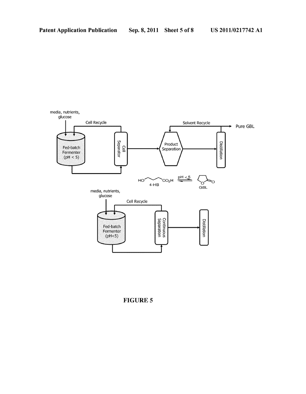 MICROORGANISMS AND METHODS FOR THE COPRODUCTION 1,4-BUTANEDIOL AND     GAMMA-BUTYROLACTONE - diagram, schematic, and image 06