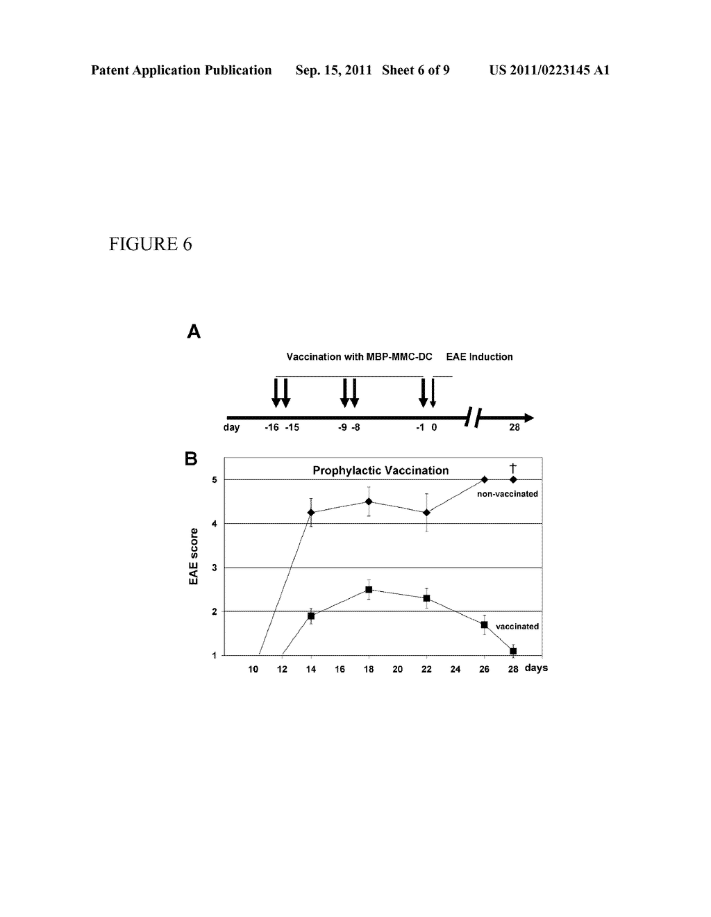 IMMUNOSUPPRESSIVE BLOOD CELLS AND METHODS OF PRODUCING THE SAME - diagram, schematic, and image 07