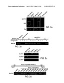 Botulinum Neurotoxin A Receptor and the Use Thereof diagram and image