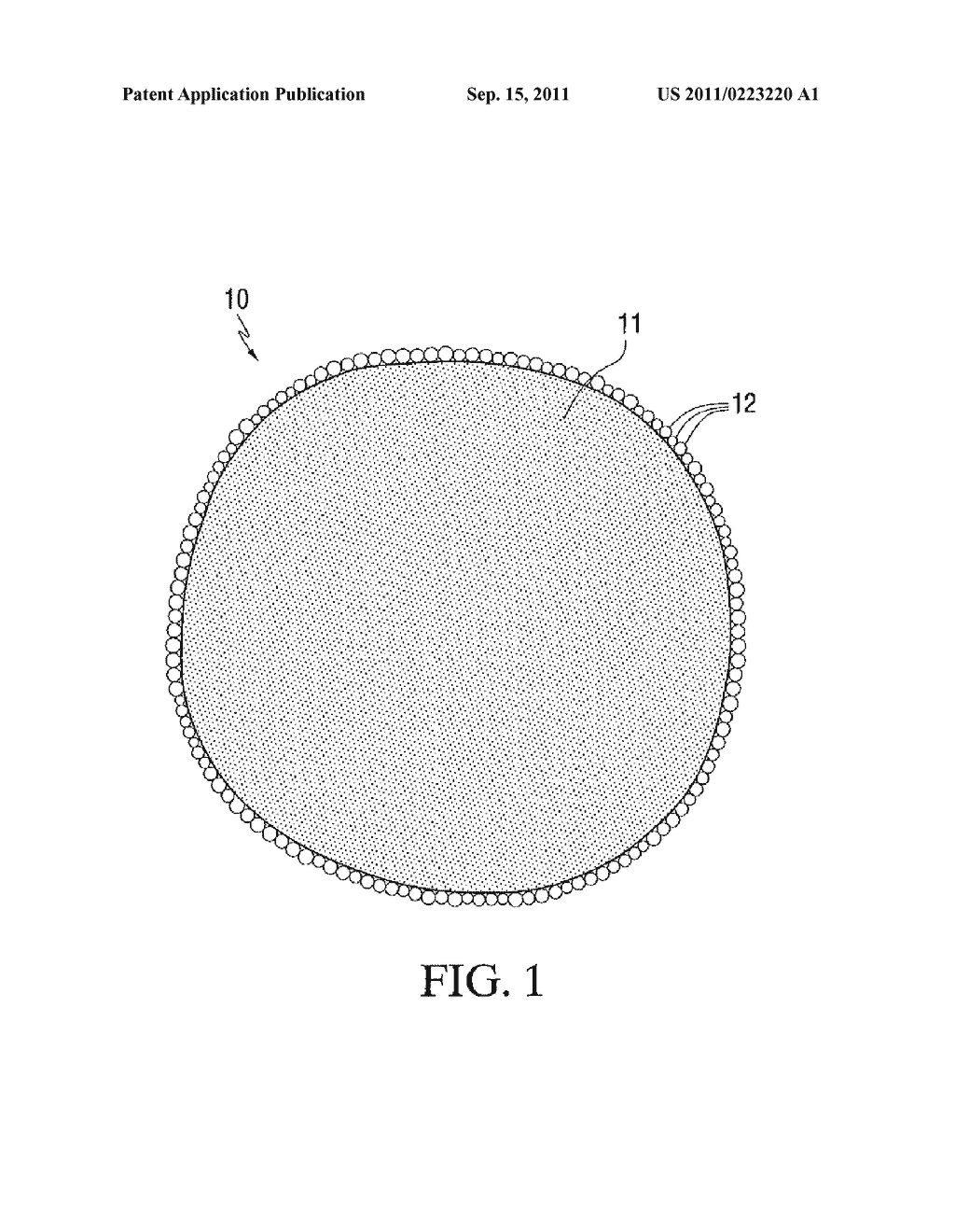 DISPERSIONS OF ENCAPSULATED PARTICLES AND METHODS FOR THEIR PRODUCTION AND     USE - diagram, schematic, and image 02