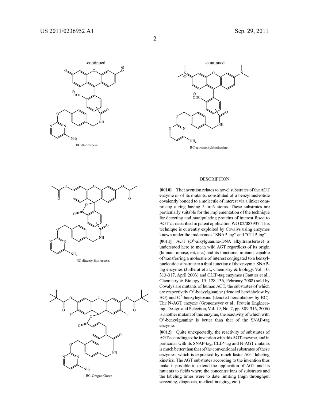 NOVEL SUBSTRATES OF O6-ALKYLGUANINE-DNA ALKYLTRANSFERASE AND MUTANTS     THEREOF - diagram, schematic, and image 16