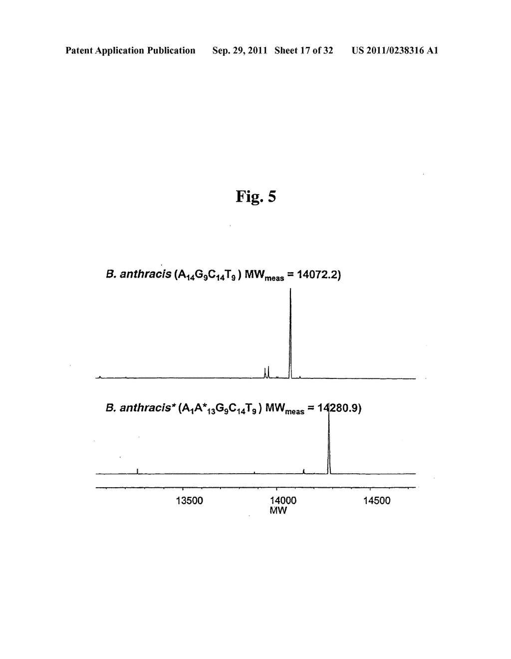 SECONDARY STRUCTURE DEFINING DATABASE AND METHODS FOR DETERMINING IDENTITY     AND GEOGRAPHIC ORIGIN OF AN UNKNOWN BIOAGENT THEREBY - diagram, schematic, and image 18