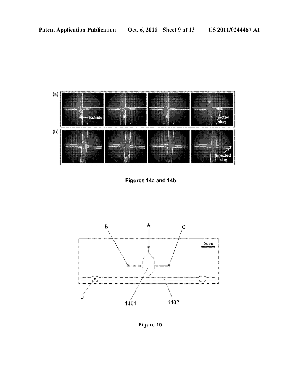 MICROFLUIDIC APPARATUS AND METHOD FOR DNA EXTRACTION, AMPLIFICATION AND     ANALYSIS - diagram, schematic, and image 10